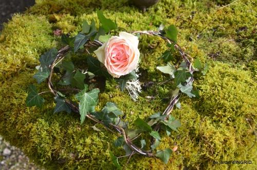 jonquilles,jacinthes,héllébores,coeur,roses,hamaméllis 118.JPG