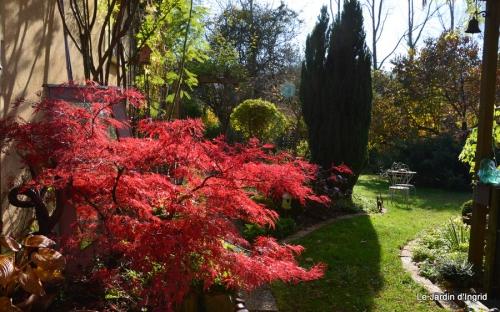 jardin et travaux d'automne 062-001.JPG