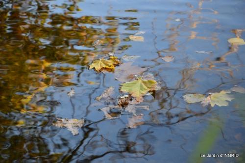 Romefort,bord de Creuse,vent,feuilles,jardin,canal 031.JPG