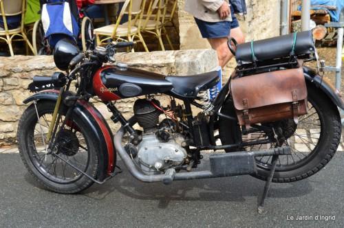 retombantes,puces Lalinde Trémolat,vieilles motos,gouttes,jardin 047.JPG