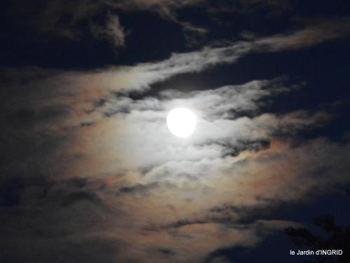 clair de lune,jardin automne,coucher de soleil 035.JPG