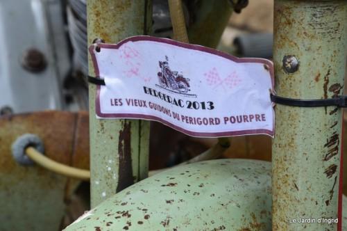 retombantes,puces Lalinde Trémolat,vieilles motos,gouttes,jardin 052.JPG
