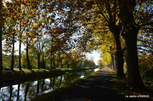 canoes,Combarel,canal automne,Issigeac,décos couronne,citrouille 257.JPG