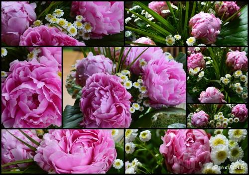 2016-06-17 jardin pluie,Inès,Bébés cygnes,bouquet,canal.jpg