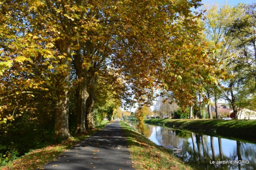 canoes,Combarel,canal automne,Issigeac,décos couronne,citrouille 254.JPG