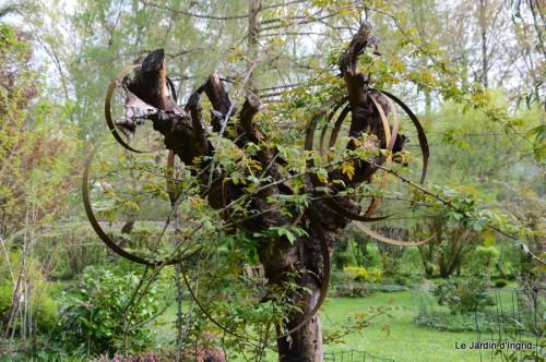 canards,pivoine,malus,abeilles,jardin 025.JPG