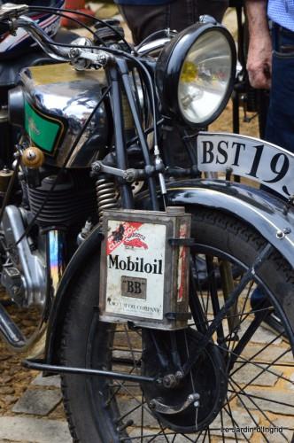 retombantes,puces Lalinde Trémolat,vieilles motos,gouttes,jardin 051.JPG