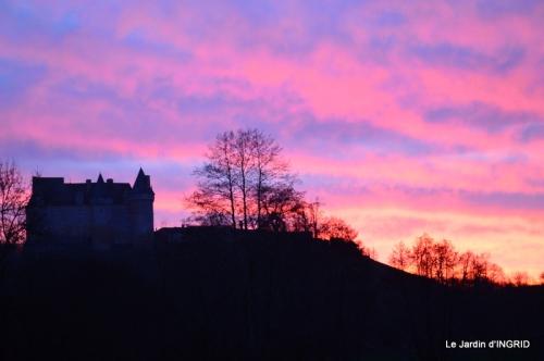 jonquilles,Montignac,massifs,coucher de soleil 081.JPG