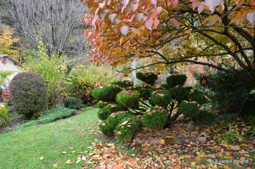 travaux,érable rouge,abeilles,Monpazier,jardin 066.JPG