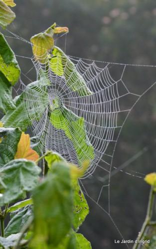 Lalinde,toiles d'araignées,les filles à St Astier 037.JPG