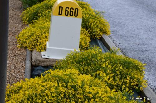 fleurs Beaumont,bouquet,tableau,serre,plants 020.JPG