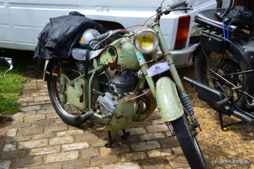 retombantes,puces Lalinde Trémolat,vieilles motos,gouttes,jardin 048.JPG
