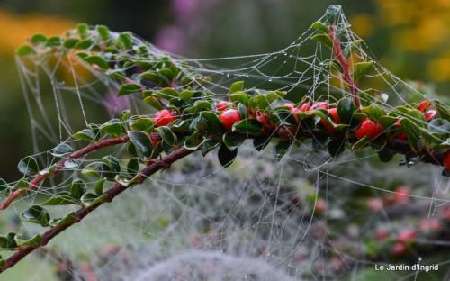 Lalinde,toiles d'araignées,les filles à St Astier 045.JPG