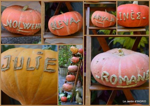 2015-10-16 marché Issigeac,decos citrouilles,jardin automne,compo dahlias.jpg