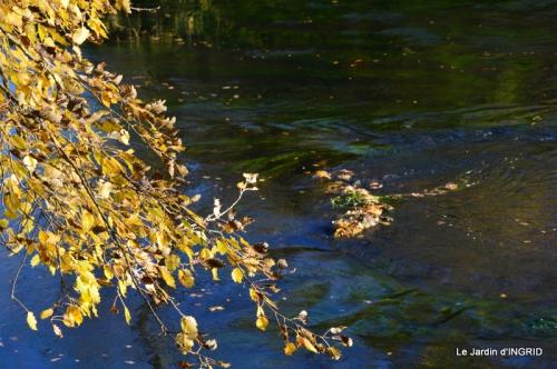 Romefort,bord de Creuse,vent,feuilles,jardin,canal 038.JPG