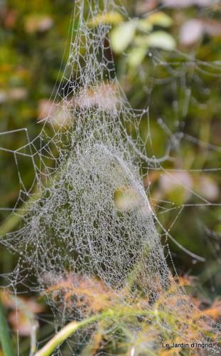 Lalinde,toiles d'araignées,les filles à St Astier 043.JPG