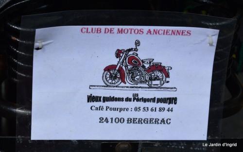 retombantes,puces Lalinde Trémolat,vieilles motos,gouttes,jardin 053.JPG