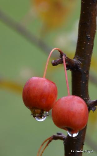 crèche,boules vertes,pluie, 046.JPG