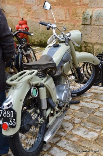 retombantes,puces Lalinde Trémolat,vieilles motos,gouttes,jardin 050.JPG