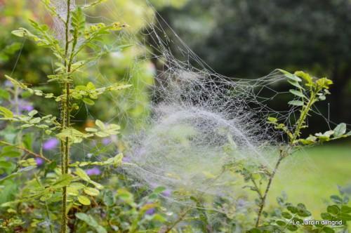 Lalinde,toiles d'araignées,les filles à St Astier 052.JPG