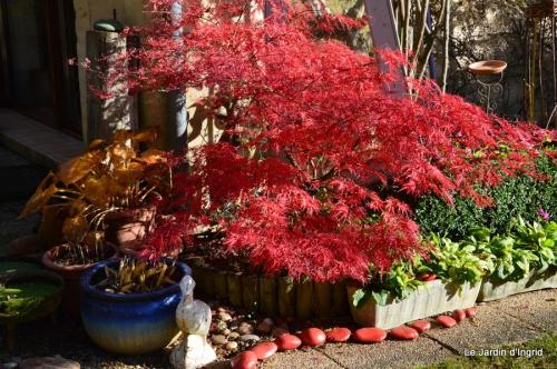 jardin et travaux d'automne 072.JPG